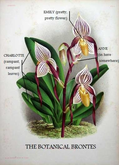 The Brontes: A Botanical Study
